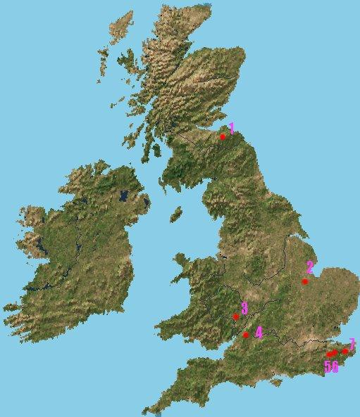 写真は昼間の英国上空からの衛星写真です。海の部分だけは画像処理で色を変... 英国の巨樹 海堀常